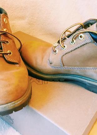 Осенне-зимние ботинки timberland !