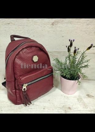 Мягкий полуспортивный городской рюкзак david jones cm5357 бордо