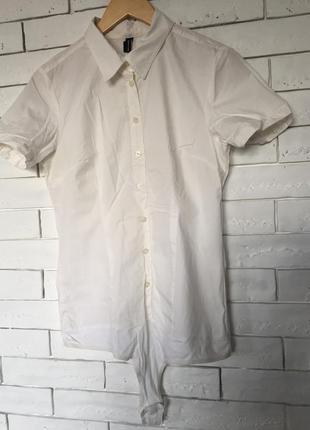 Рубашка-боди с коротким рукавом.