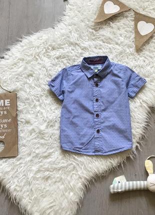 Рубашка в горошек на 18-24 месяца