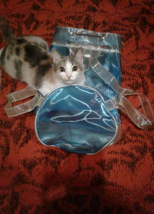 Эксклюзивный рюкзак из силикона