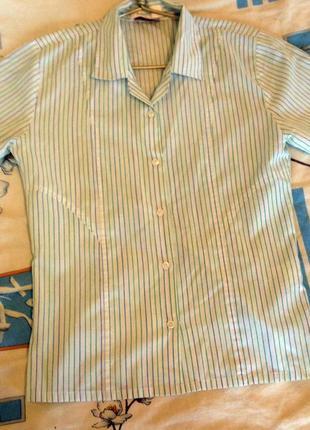 Светлая блузка в полоску