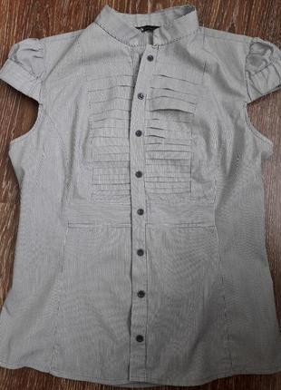 🍀кофточка рубашка классика воротник-стоечка