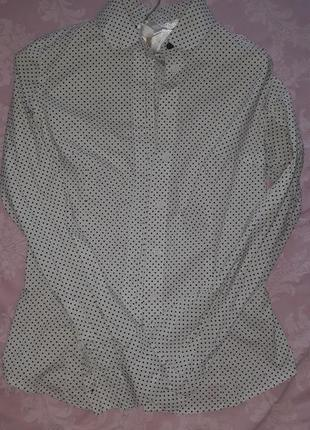 Белая рубашка в горошек