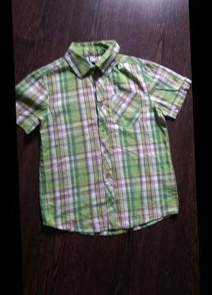 Коттоновая фирменная рубашка