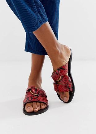 Кожаные красные сандалии со змеиным принтом и кольцом asos,красные шлепки змеиный принт