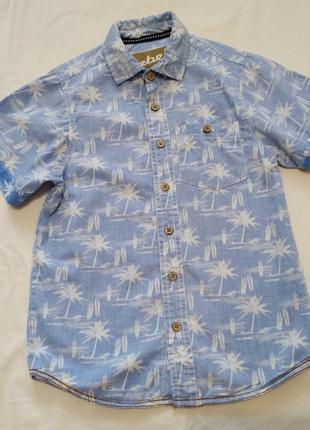 Голубая рубашка тениска