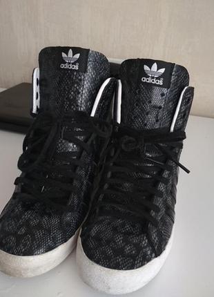 Сникерсы adidas