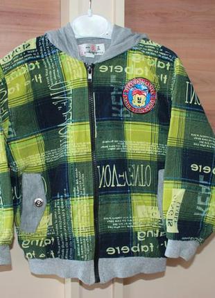 Куртка ветровка бомбер мастерка мальчик 2 - 3 года 92 104 парка демисезонная